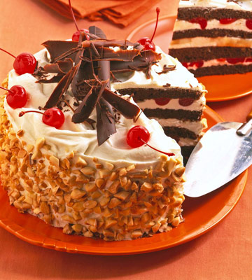 Nutty Mocha Layer Cake