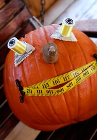 Sewing Basket Pumpkin