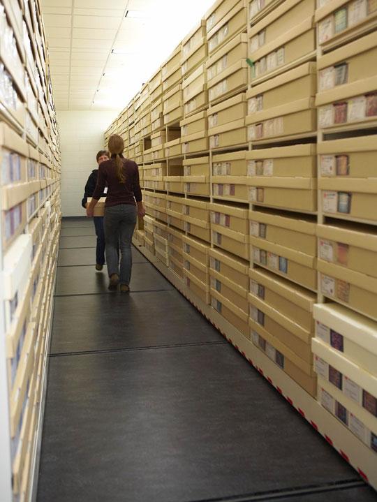 Savvy Storage
