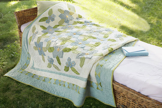 Color Options and Web-Exclusive Projects from American Patchwork & Quilting June 2009