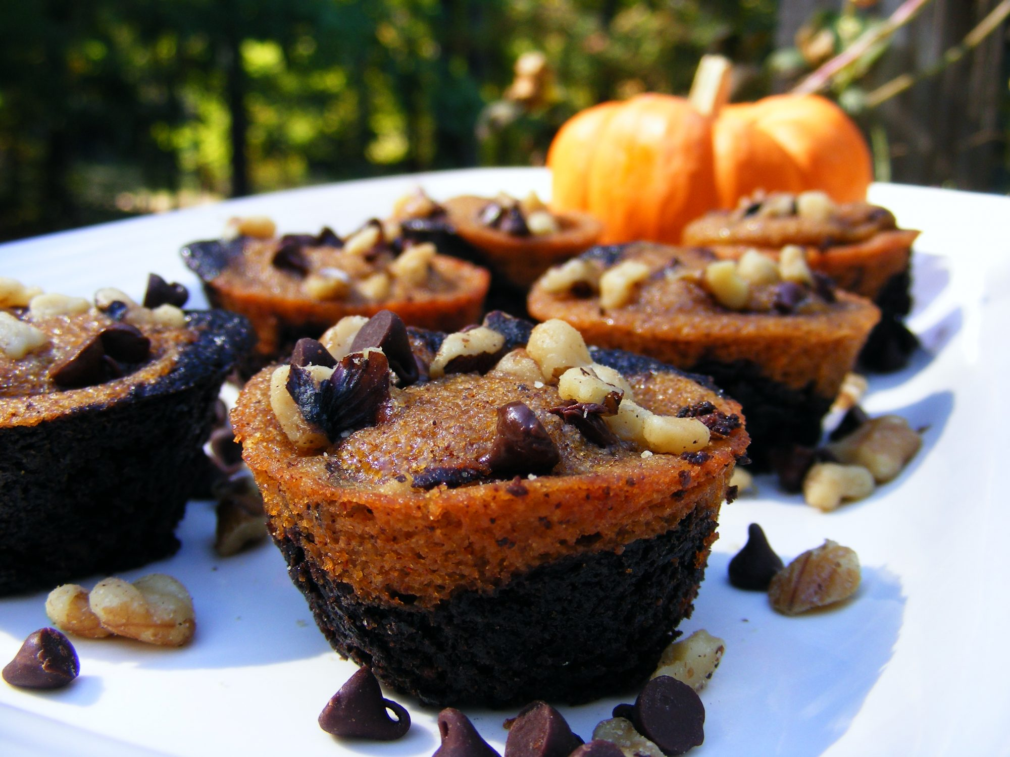 Pumpkin Brownies topped with chopped nuts