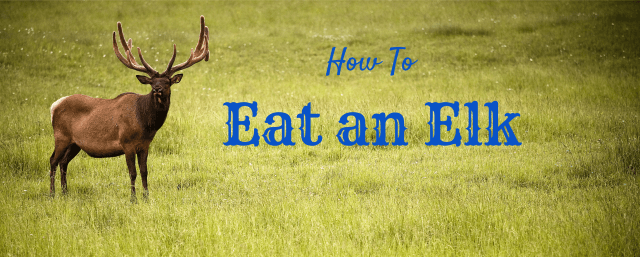 How to Eat an Elk