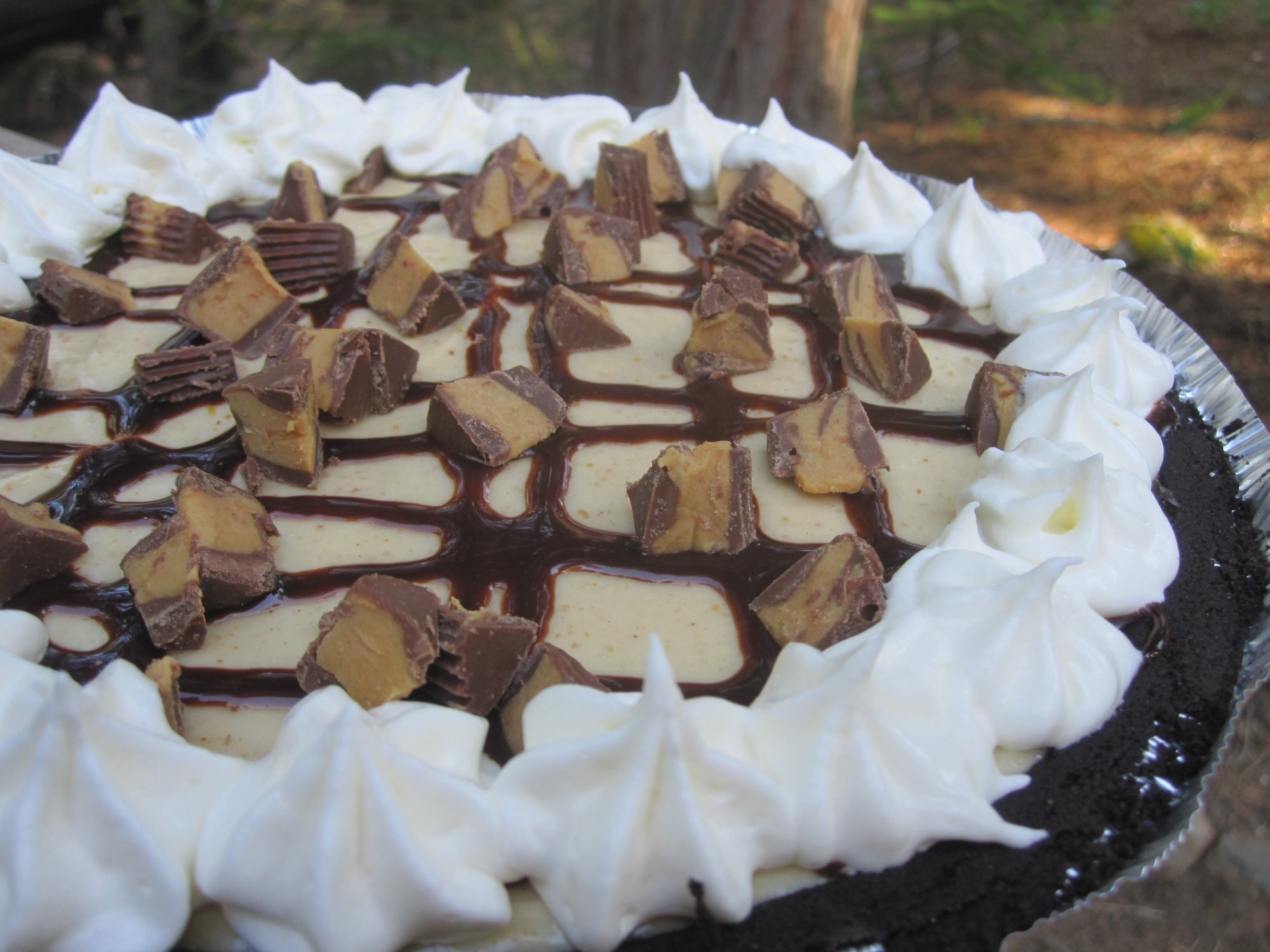 866398 Smooth and Creamy Peanut Butter Pie 20343 Lissa