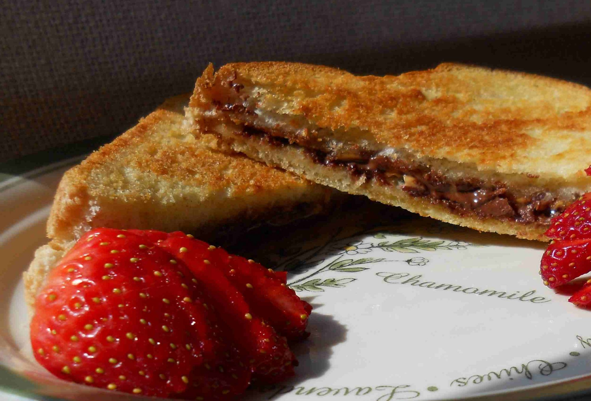 Peanut Butter and Chocolate Panini