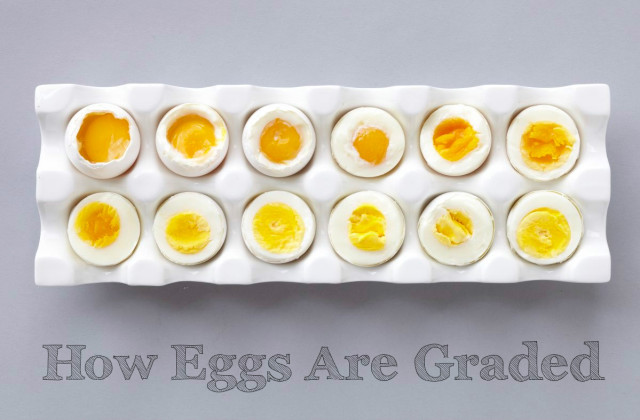 eggs_cooked_differently_text-640x420.jpg