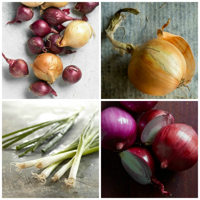 Collage-of-Onions-and-such.jpg