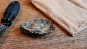 oyster-300x169.png