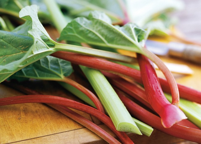 stalks of fresh green and red rhubarb