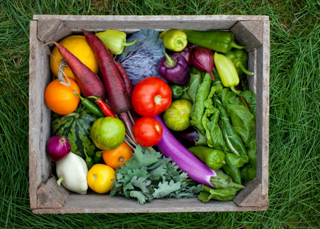 Community Supported Agriculture Box