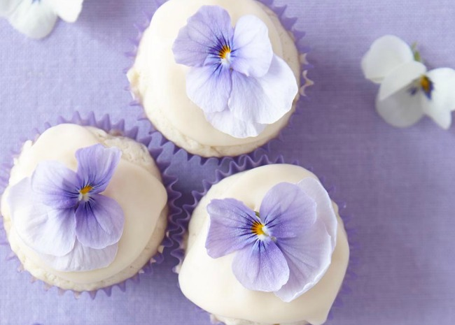 Mini Coconut Cupcakes with Passion Fruit Icing