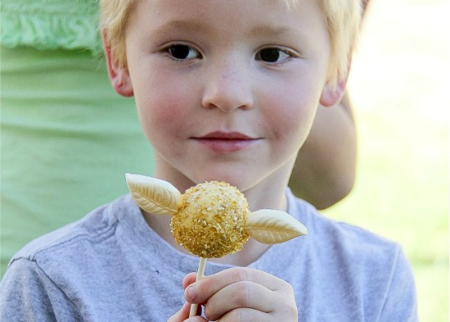 Golden Snitch Cake Pops 2 by Tonya Staab