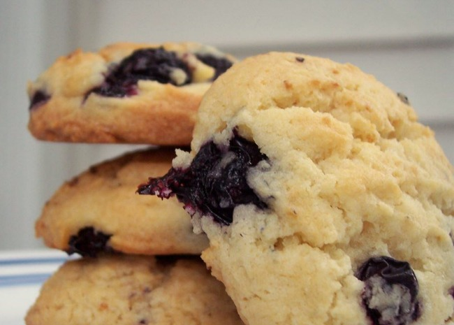 278858 Blueberry Drop Cookies Photo by pomplemousse 650x465