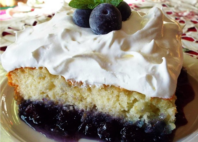 3216321 Blueberry Bottom Cake Photo by Yoly 656x465