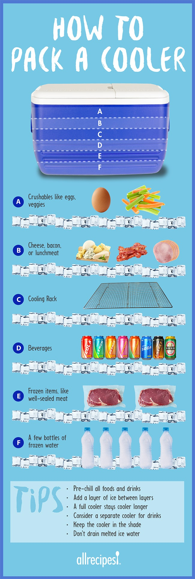 How to Pack a Cooler Infographic by Allrecipes