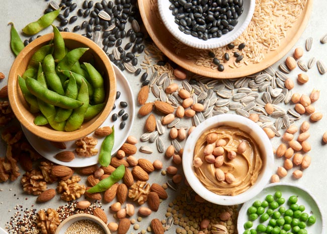 array of plant-based proteins: beans, nuts, seeds, grains, and legumes