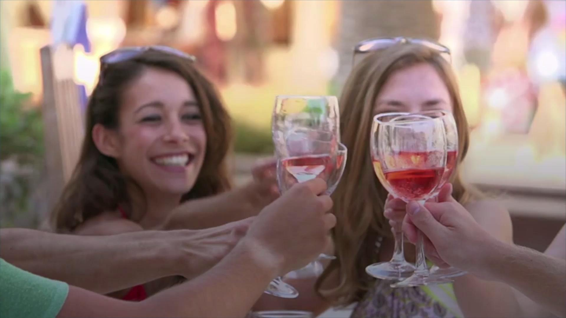 girls cheers with rose wine