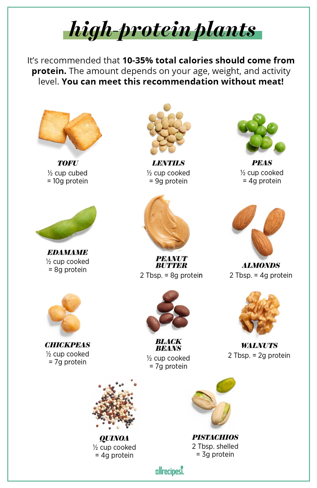 high protein plants