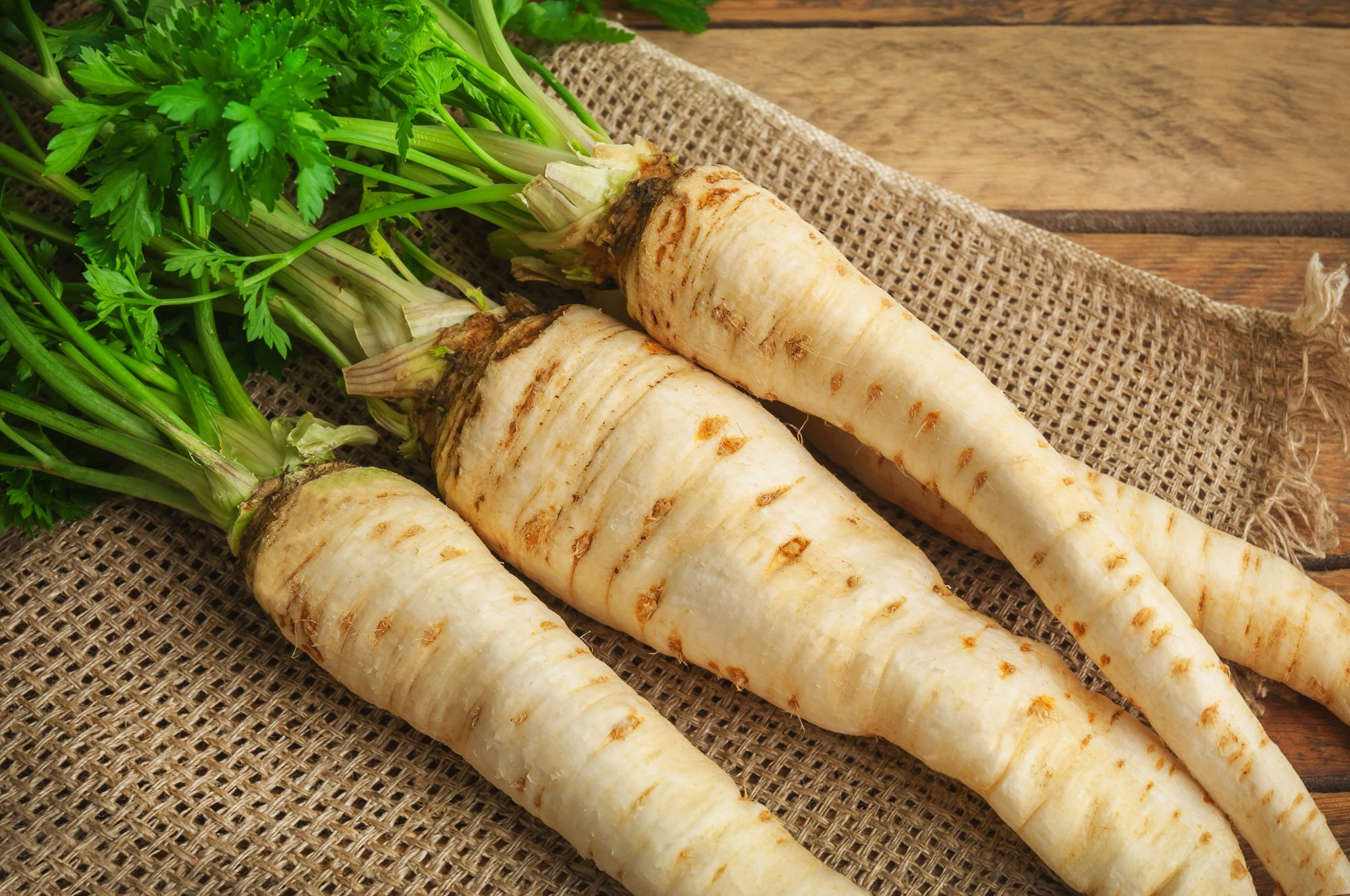 Parsnips by Getty