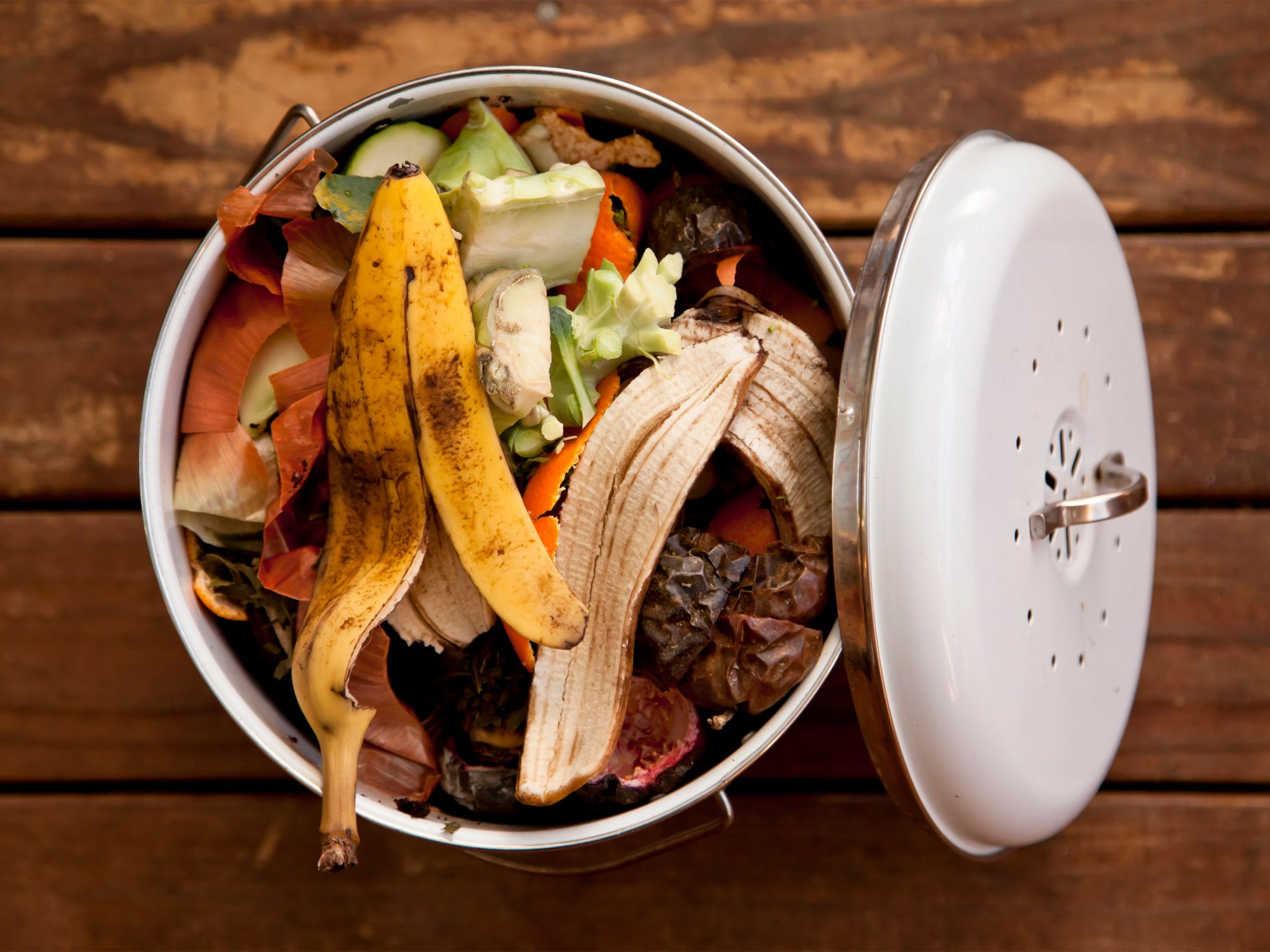Food waste in white bin