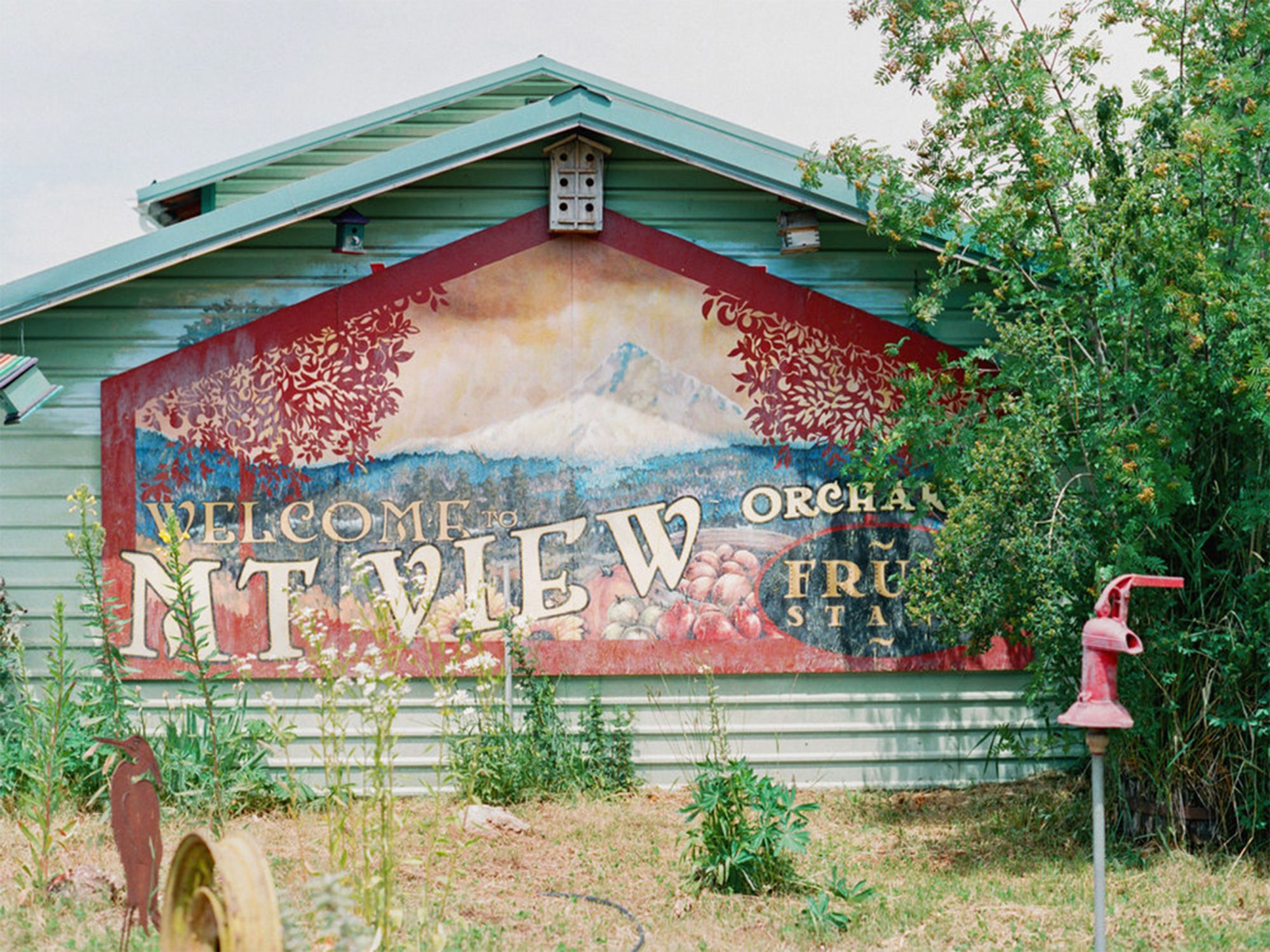 Mt. View Orchards and Cidery Fruit Stand