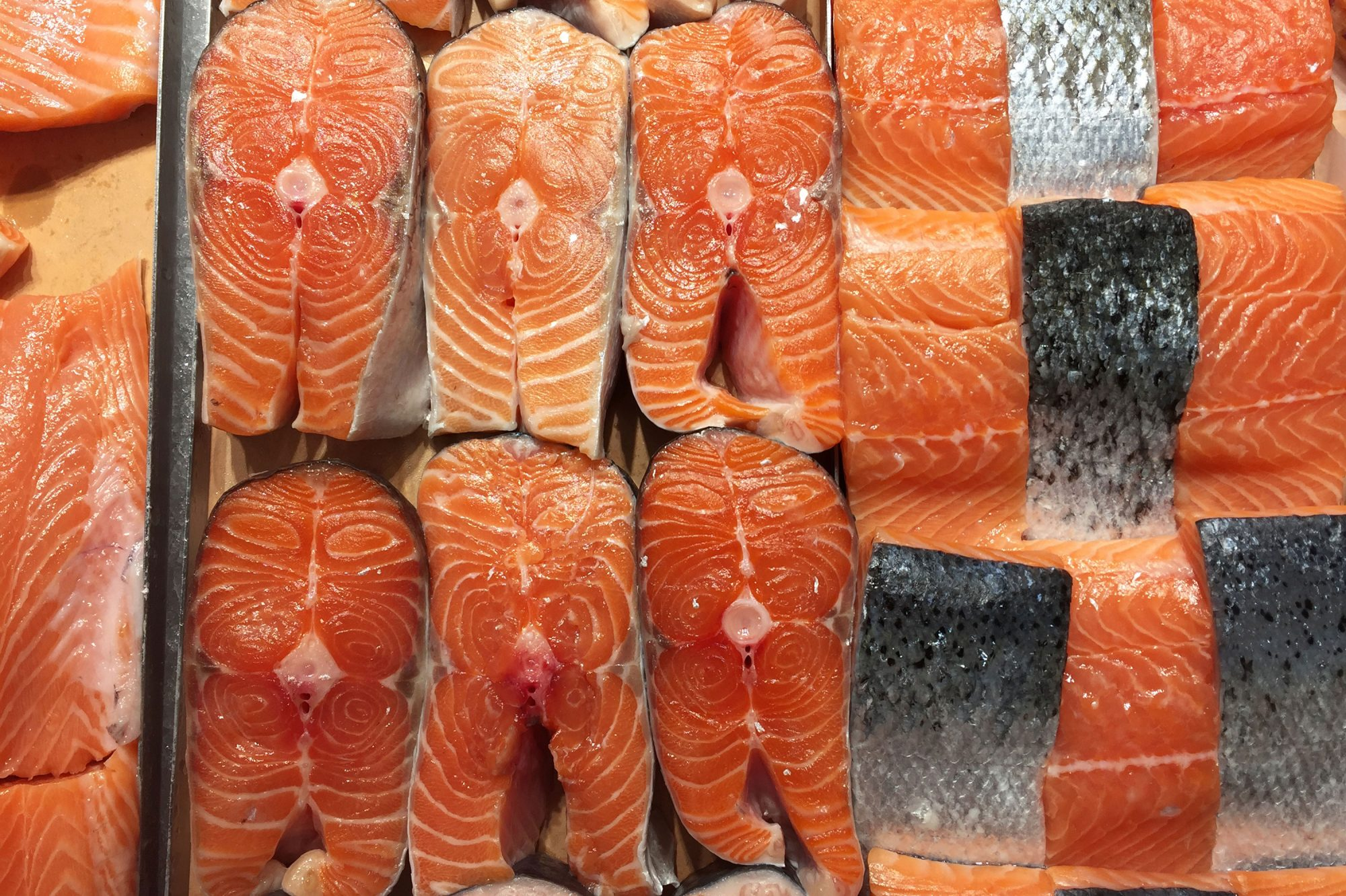 A Guide to the Different Types of Salmon