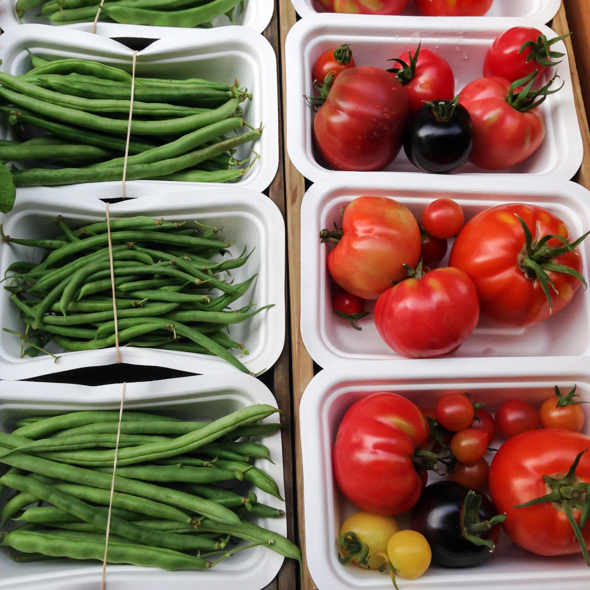 Organic tomatoes and green french beans in compostable packaging made from sugarcane fibre, at a farmers market in New Zealand, NZ