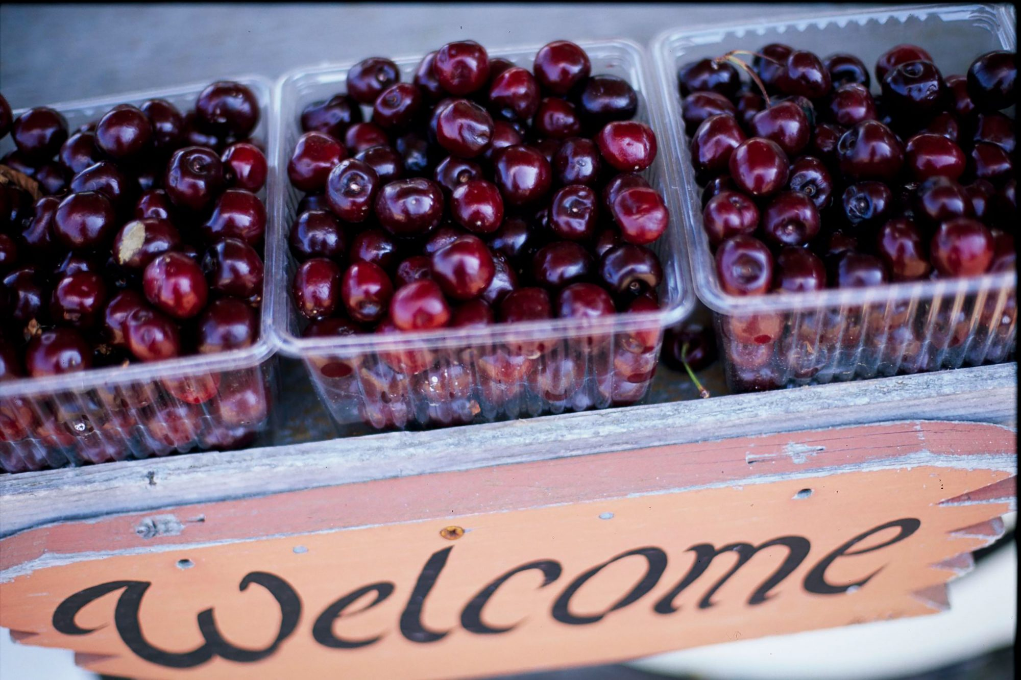 Cherries in cartons above welcome sign