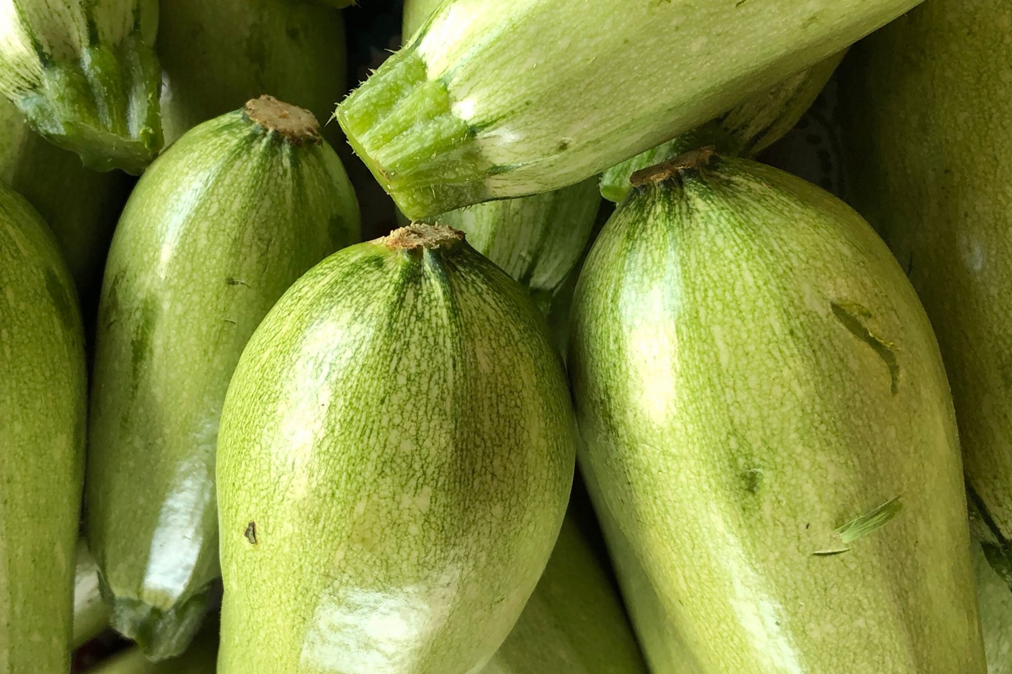 10 Types Of Summer Squash And How To Cook With Them Allrecipes
