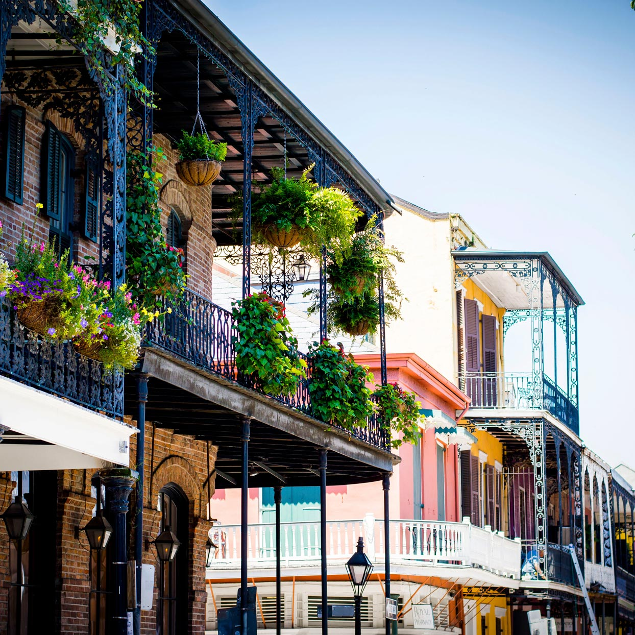A Food-First Travel Guide to New Orleans