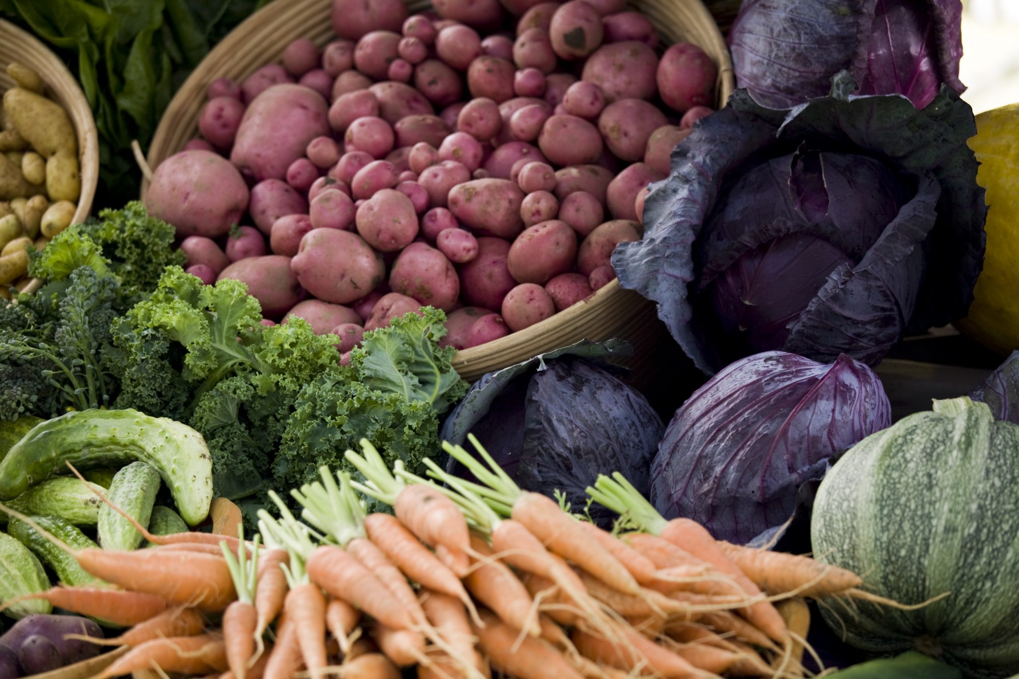 Abundant fresh produce piled high at a farmers market. Check out my