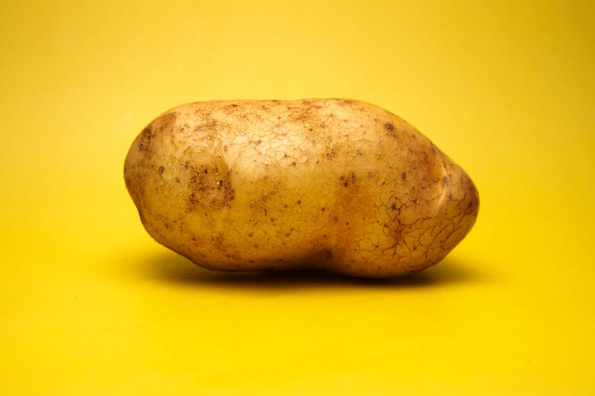 Close-Up Of Potato Against Yellow Background