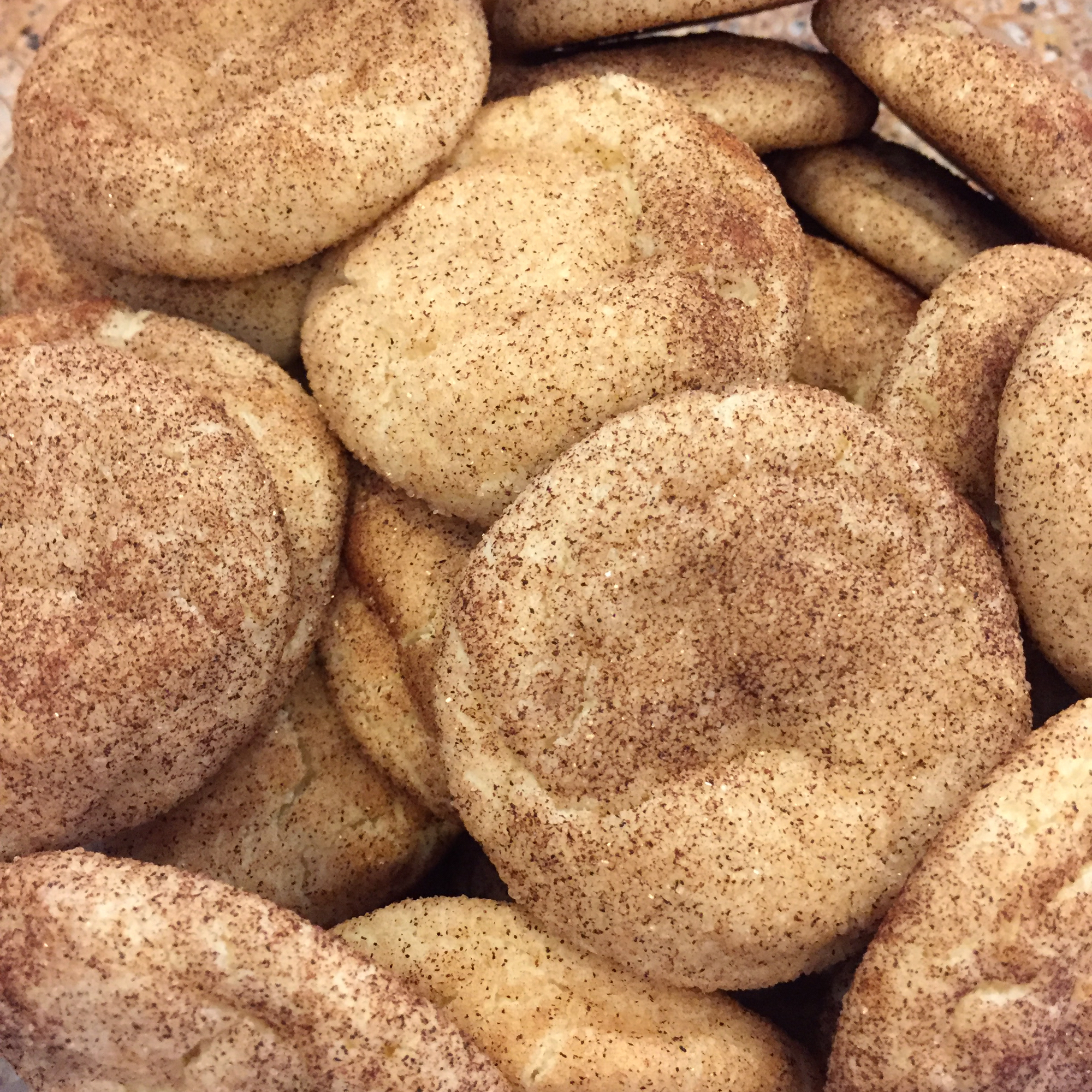 Several of Mrs. Sigg's Snickerdoodles