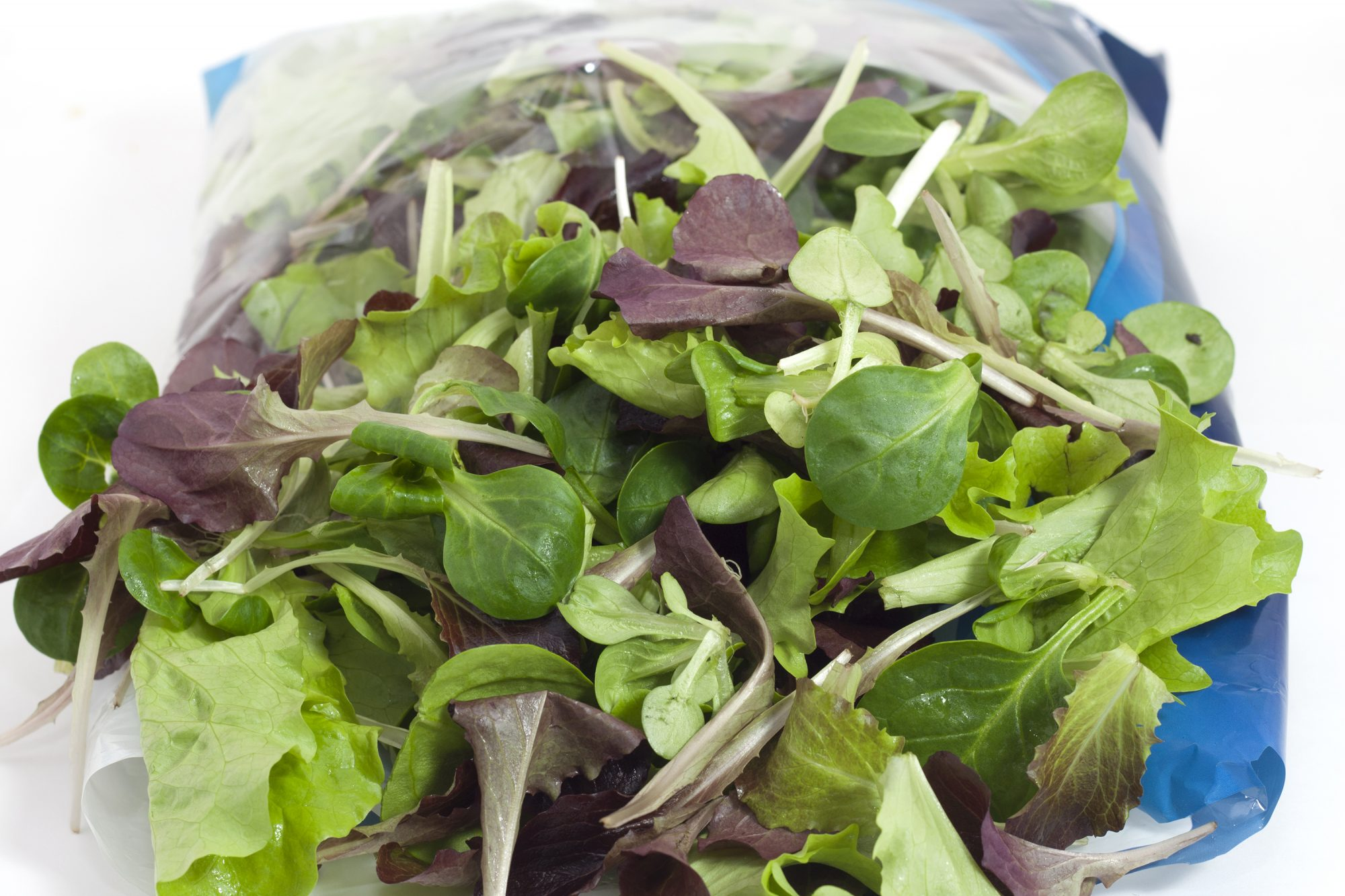 How to Keep Bagged Salad Fresh As Long As Possible