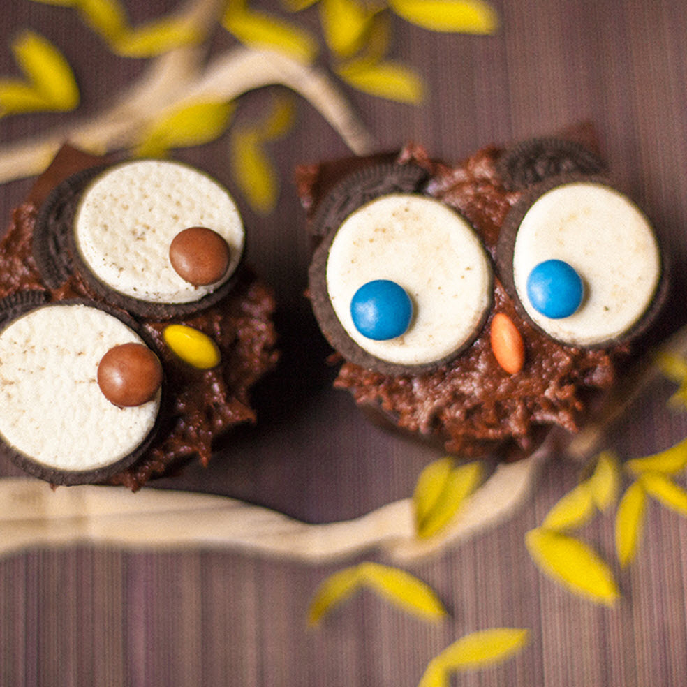 chocolate cupcakes with owl eyes and beaks