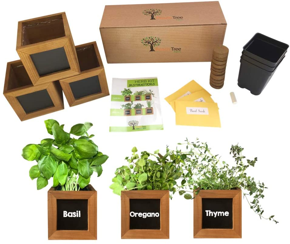 Peach Tree Farm Indoor Herb Garden Kit on Amazon
