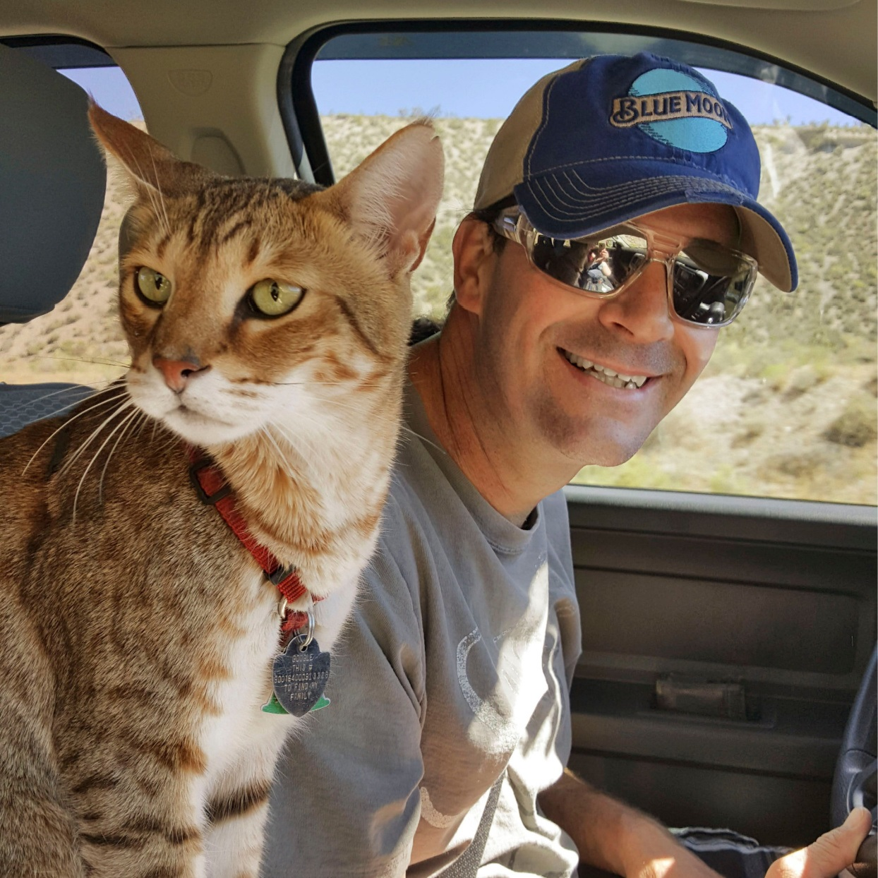 Moose the cat and Dave