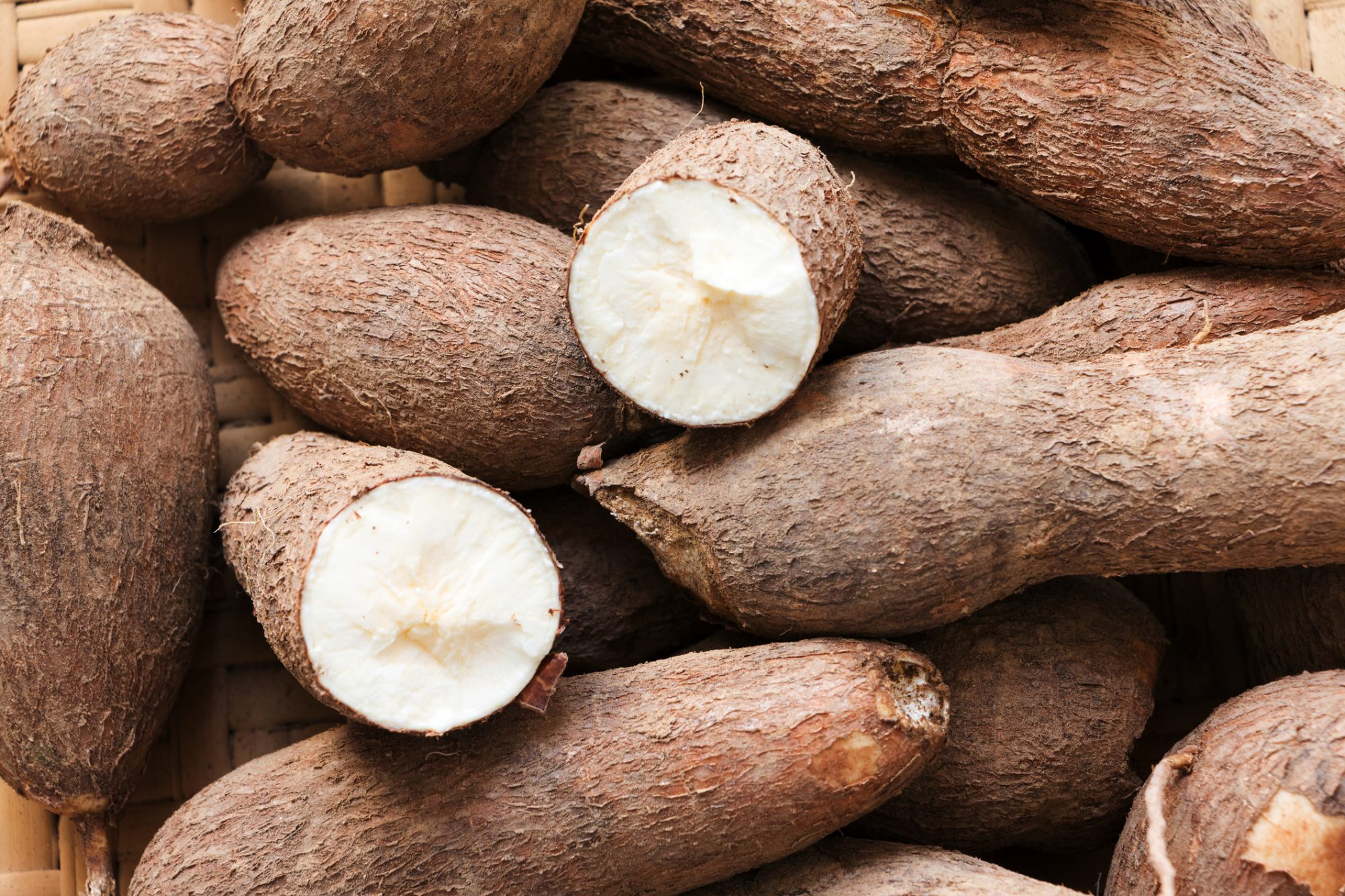 is cassava safe on a yeast diet?