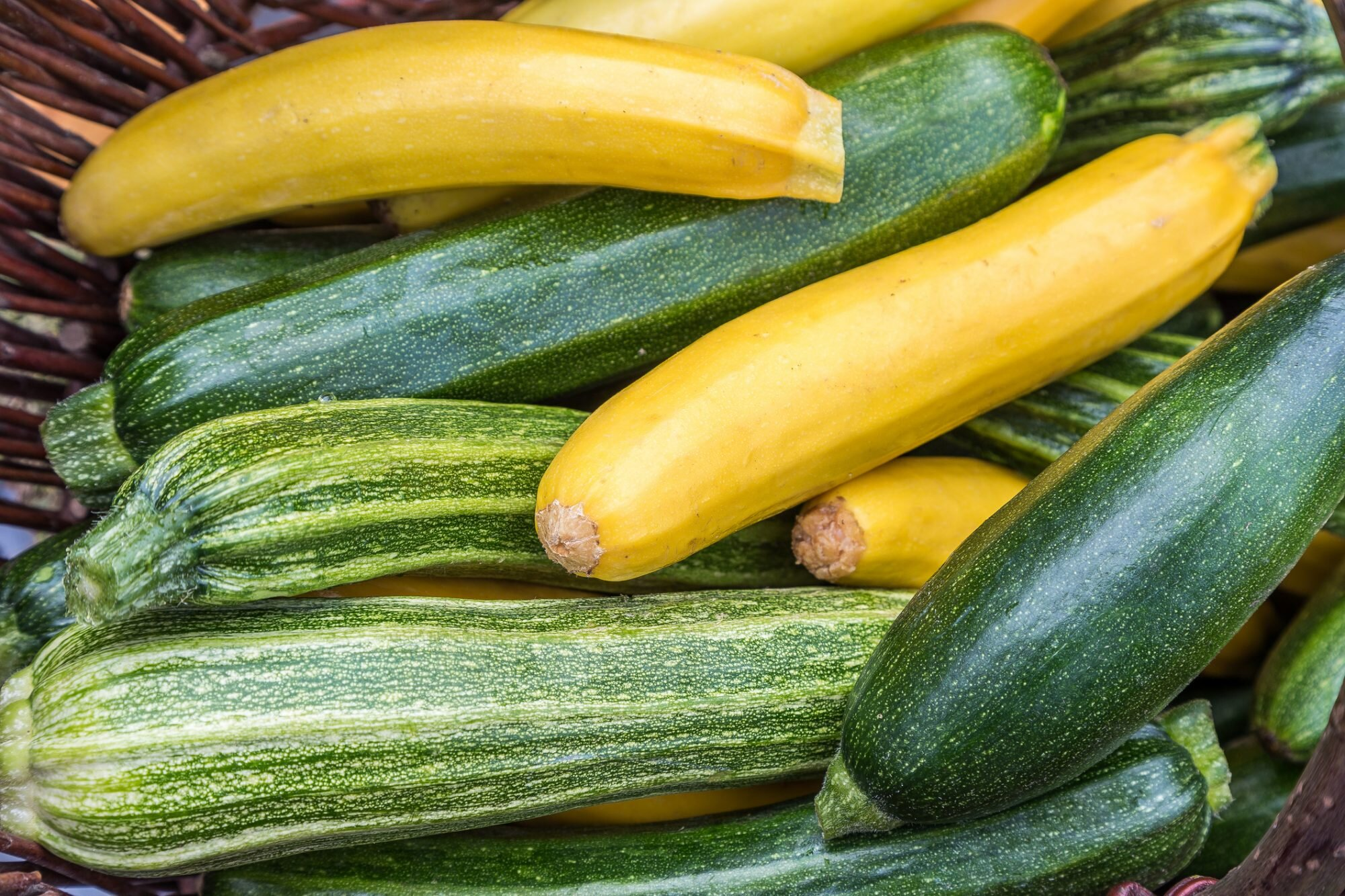 How To Buy And Cook Zucchini A Complete Guide Allrecipes