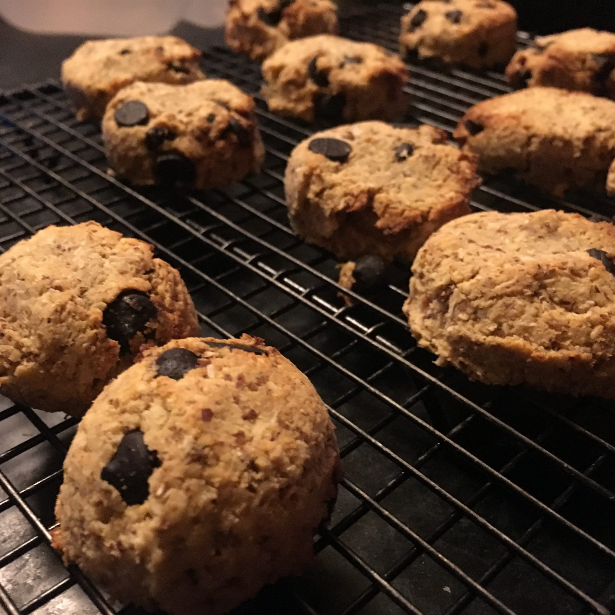 Paleo Coconut Dark Chocolate Chip Cookies on a cooling rack