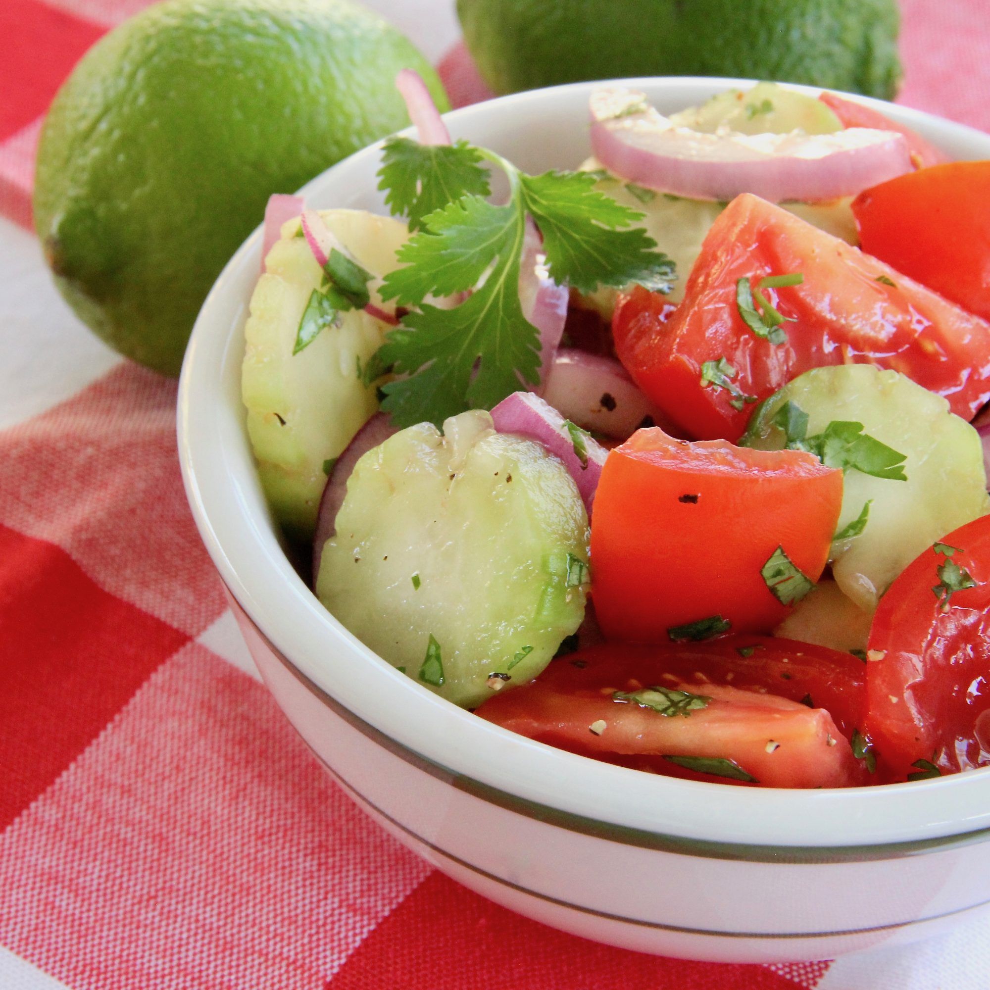 Cucumber, Tomato, and Red Onion Salad in a bowl on a checkered red picnic blanket