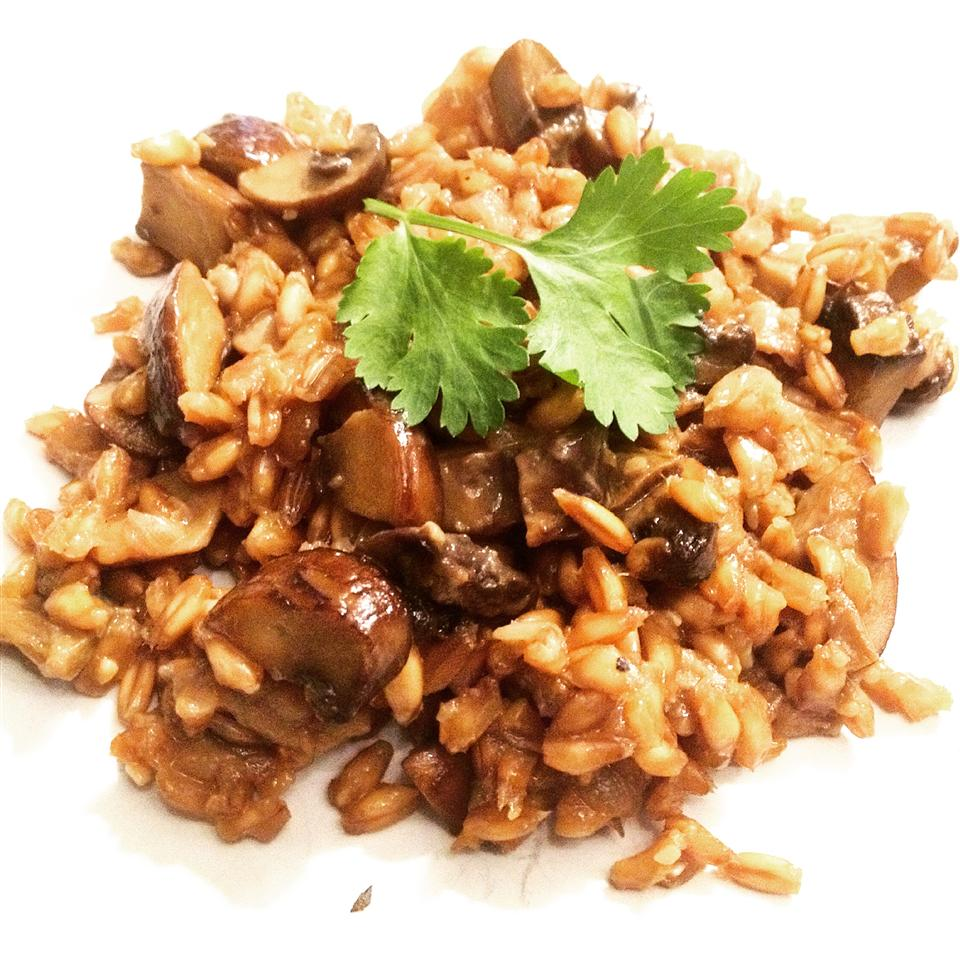 Farro with Wild Mushrooms on a white dish
