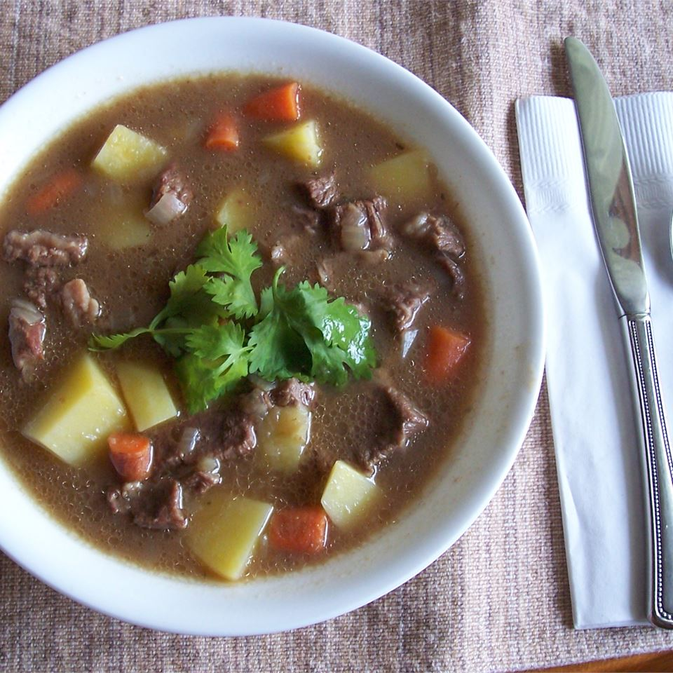 Beef Stew IV in a white bowl