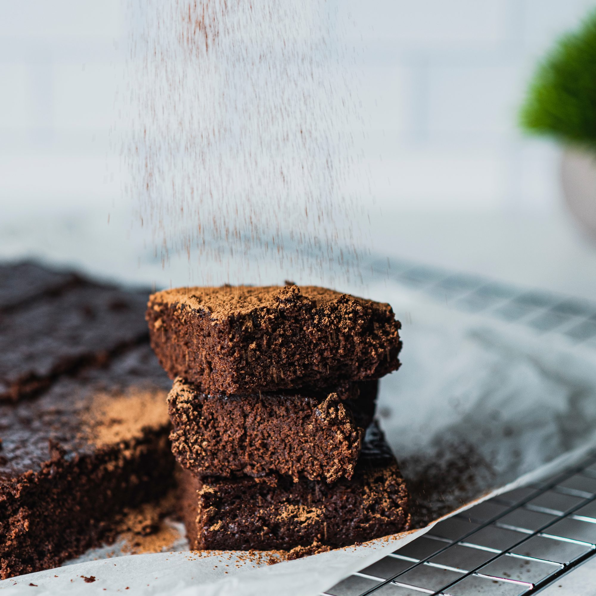 Vegan Brownies on a white plate with cocoa powder