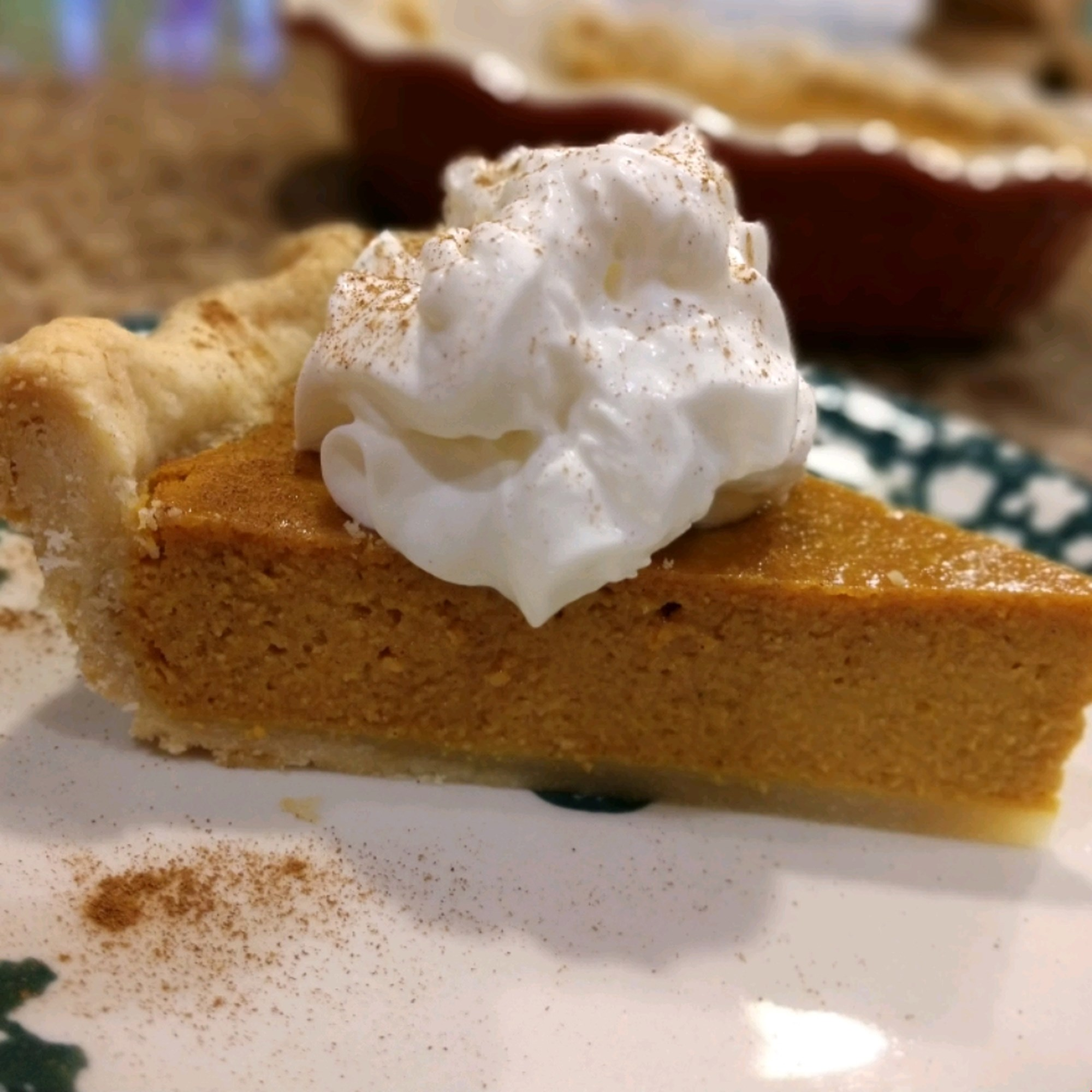 Pumpkin Pie with whipped cream and cinnamon on paper plate