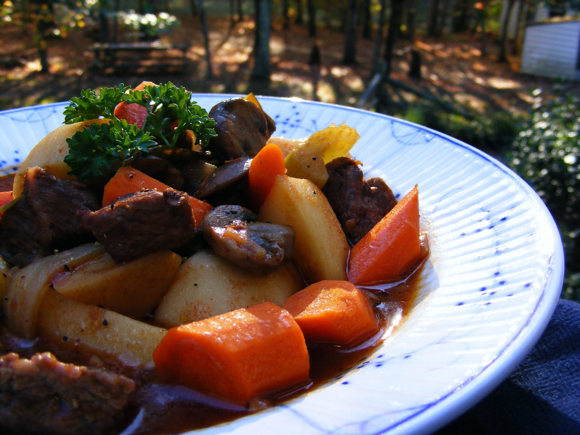 A bowl of stew with chunks of beef, carrots, potatoes, and mushrooms, garnished with parsley