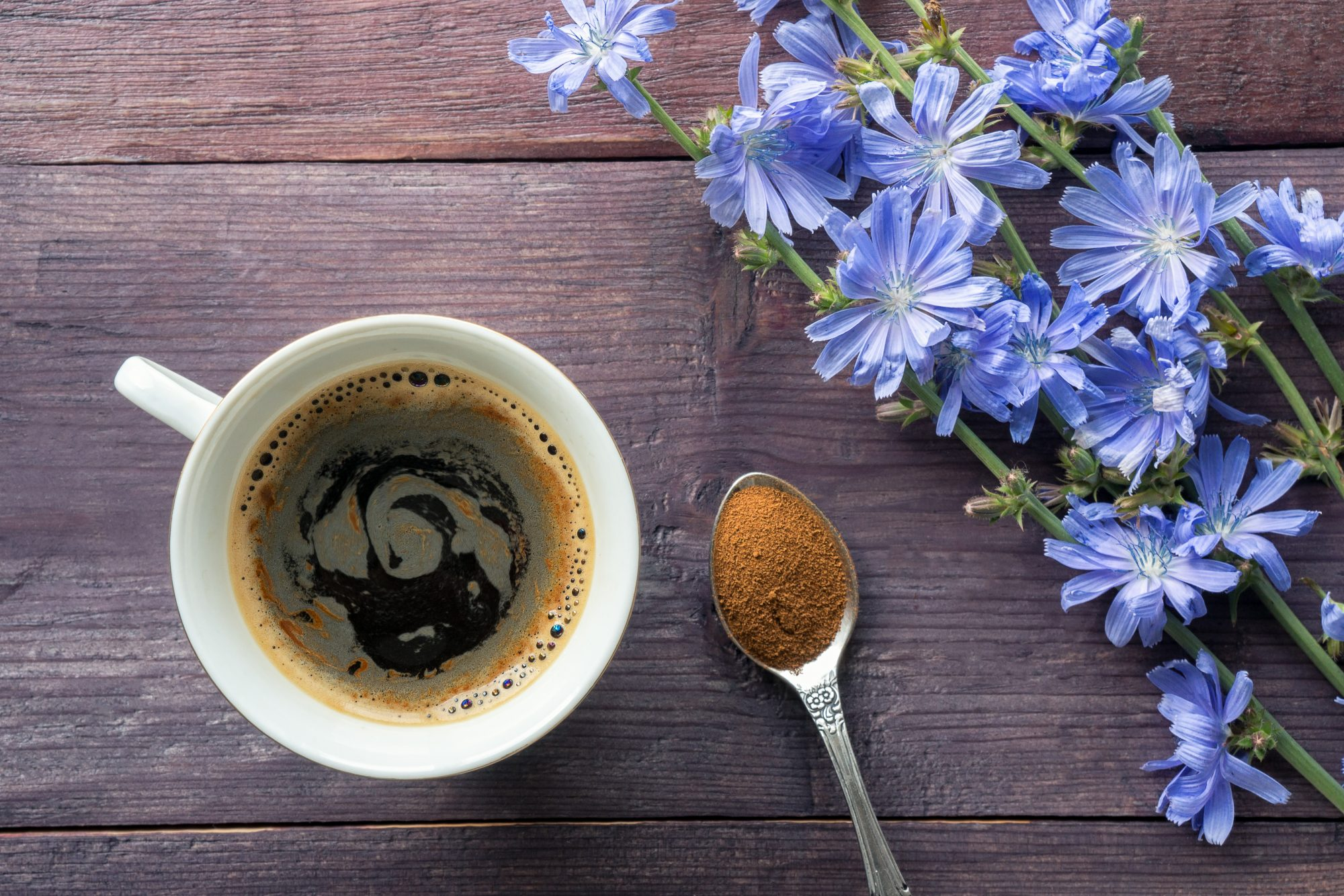 Chicory drink with blue flowers
