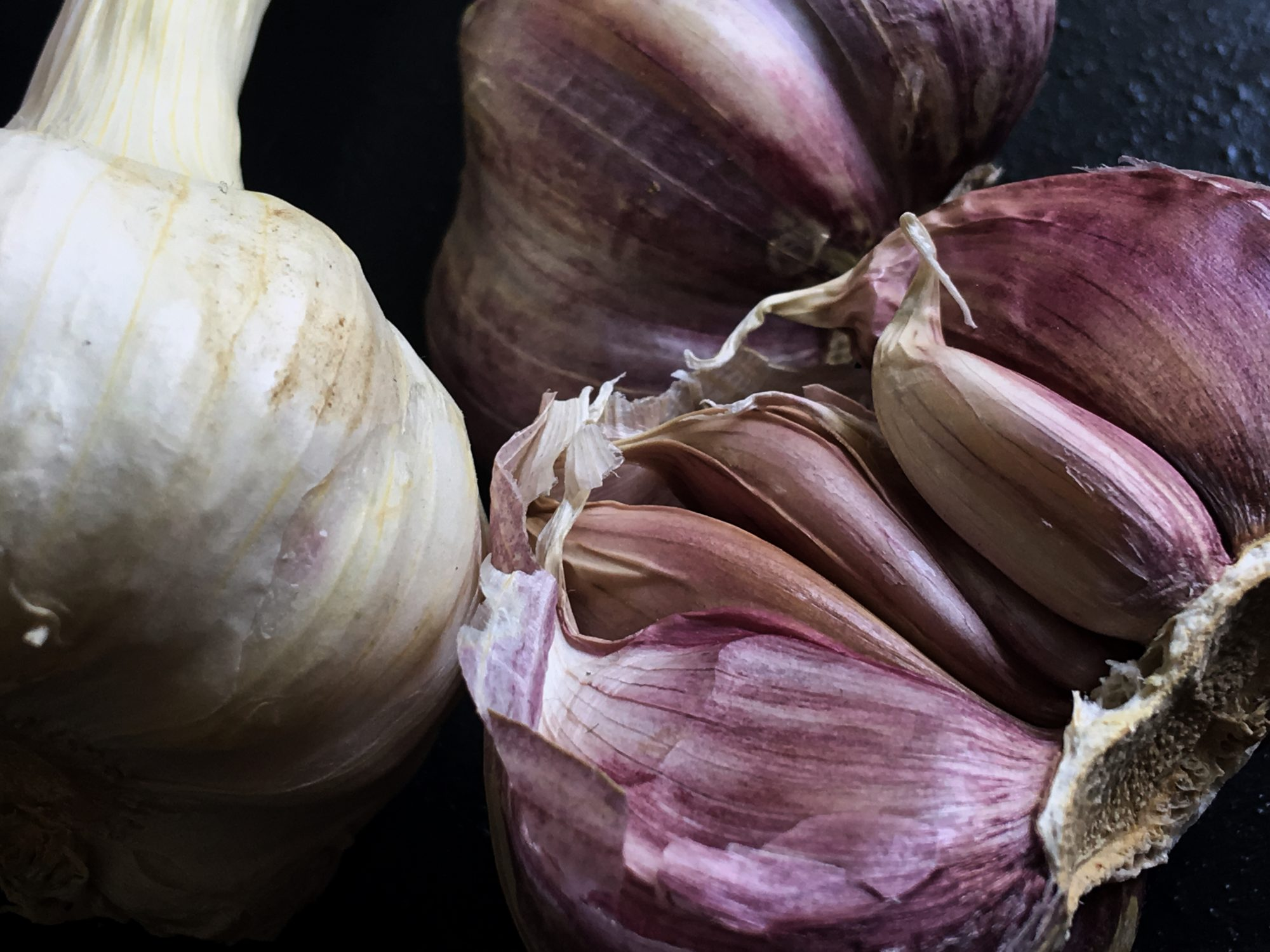 Close up of purple and white garlic