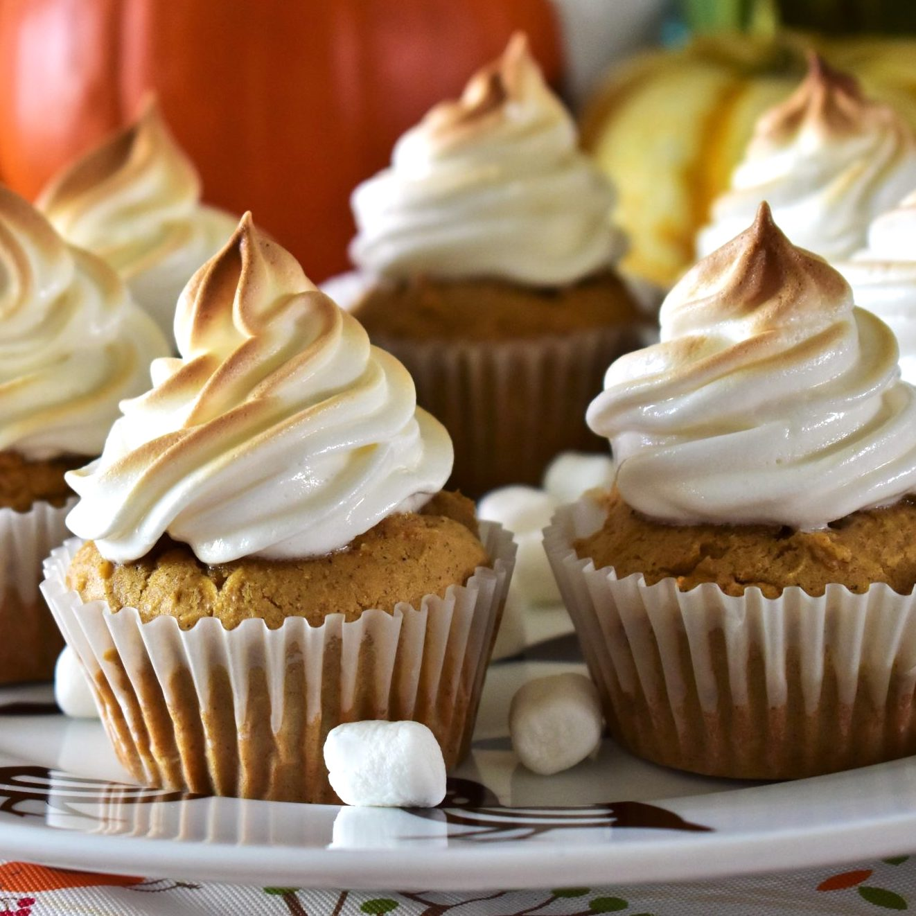 cupcakes with piped marshmallow topping on a white dish
