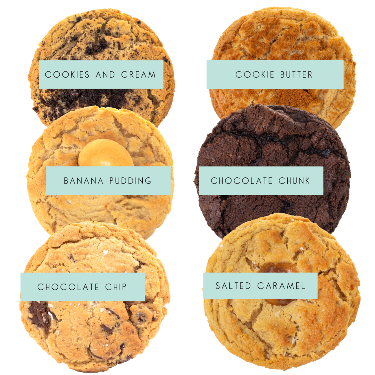 Half a dozen different types of cookies with labels