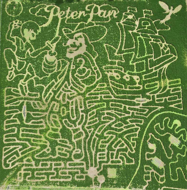Uncle Shuck's Corn Maze with Peter Pan design